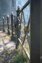 prunkvoller Zaun