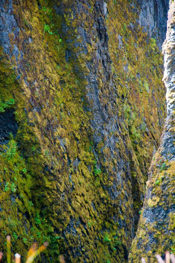 Die Bergwand im Detail
