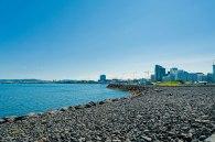 Im Hafen von Reykjavik