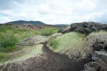 Schwarzer Sand findet man häufig auf Island