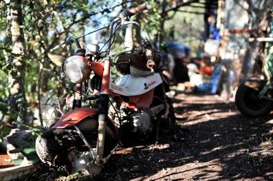 Dieses rostige Motorrad hätte ich gerne restauriert, bis ich merkte das der Motor fehlt